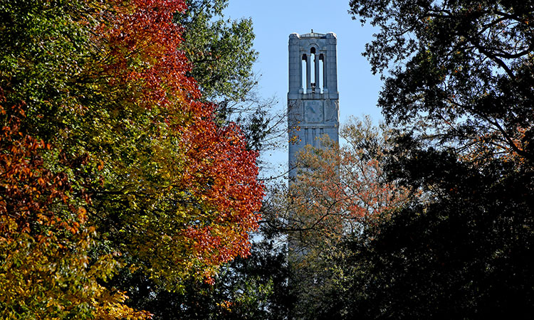 Belltower in the fall